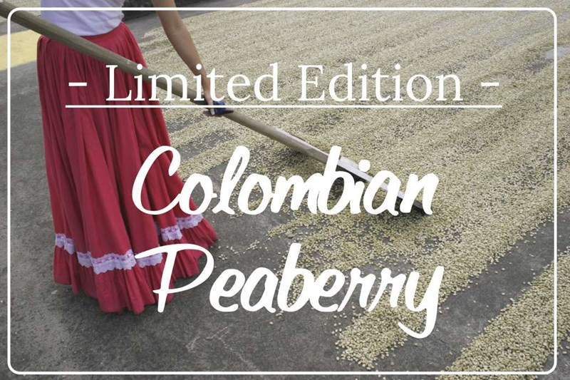 Colombian_Peaberry